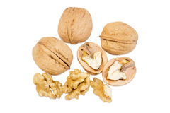 Several walnuts on a white background Stock Photos