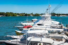 Several white fishing boats in a Caribbean harbor. On a sunny day with blue sky and no clouds Royalty Free Stock Image