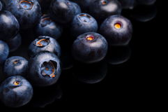 Several whole blueberries isolated on black corner Royalty Free Stock Photography