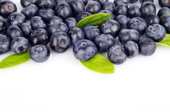 Several whole blueberries with leaves isolated on white at the top Royalty Free Stock Photo