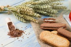 Several whole wheat biscuits on burlap Stock Images