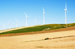 Several windmills in a  fields Stock Images