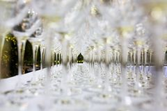 Several wine glasses Stock Photo