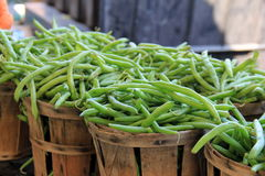 Several wood baskets filled with fresh picked green string beans Stock Photos