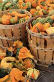 Several wood baskets filled with fresh variety of squash at local farmers market Stock Photos