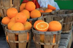 Several wood baskets, some filled with just picked oranges and some empty. Numerous wood baskets at a local farm stand, some filled with fresh picked oranges and royalty free stock photo