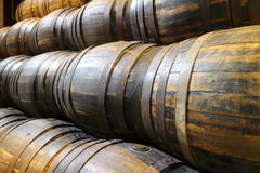 Several wooden barrels of beer Royalty Free Stock Photo