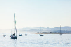 Several yachts with one in front, Stock Images