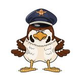 Severe cartoon sparrow in pilot service cap Royalty Free Stock Photography