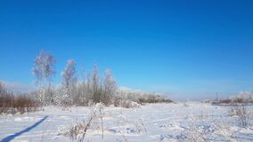 Severe Russian winter snowy landscape, frosty day. Winter snowy landscape outside the city on a Sunny frosty day. Field and trees are covered with snow. Rural stock footage