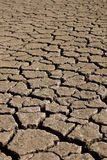 Severe sought. Cracked and dry land due to global warming Royalty Free Stock Photography