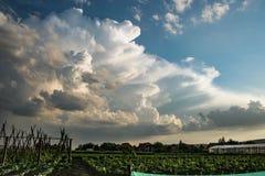 Beautiful storm cloud over the countryside of Transylvania, Romania. stock photos