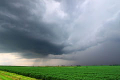 Severe Thunderstorm in Miwest USA. Severe Thunderstorm forms over the flat farmlands of midwestern USA Stock Photography