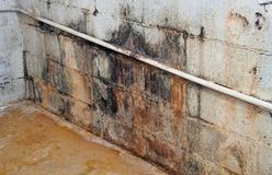 Severe water damage. On a wall in a neglected basement. It's covered in dirt, cracks, mold and mildew stock image