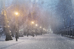 Severe weather in Kiev Stock Photography