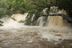 Severely swollen Lower Twin Falls. After a tropical rainstorm. The flash flood blocks the path to the Upper Twin Falls Stock Photography