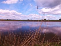 The Severn Channel at Epney Stock Photo
