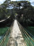 Sevilla Bamboo Bridge su Bohol filippine Fotografie Stock