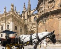 Sevilla Cathedral Fotografia Stock Libera da Diritti