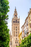 Sevilla Cathedral, Spain. Photograph of Giralda -Cathedral in Sevilla, Andalusia, Spain royalty free stock photography