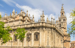 Sevilla cathedral. In the summer Stock Image