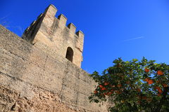 Sevilla. Defensive wall. royalty free stock image