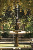 Sevilla Garden Stock Image