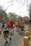 Sevilla Marathon 2016, passing through the Alameda de Hercules. Royalty Free Stock Photo