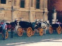 Sevilla spårvagnar Arkivfoto