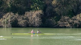 Sevilla, Spain. Rowers training on the river Guadalquivir stock footage