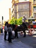 Sevilla Spanien am 17. April 2013/elegante carrigages transportieren visi lizenzfreie stockfotografie