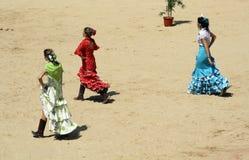 Sevillano en la plaza de toros de Pamplona. Foto de archivo libre de regalías
