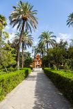 Seville Alcazar Garden Stock Images