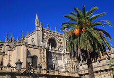 Seville, Andalusia, Spain, The Cathedral and Giralda Place Royalty Free Stock Photos