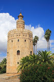 Seville, Andalusia, Spain.Torre del Oro (Golden Tower). Stock Images
