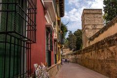 SEVILLE ANDALUSIA/SPANIEN - OKTOBER 13 2017: SMAL GATA I GAMMAL DEL AV SEVILLE arkivbilder