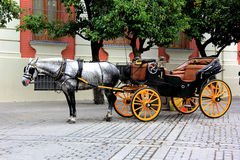 Seville Buggy. A horse and buggy awaits tourists in Plaza del Triunfo, Seville, Spain Stock Photos