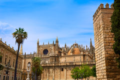 Seville cathedral and Archivo Indias Sevilla Royalty Free Stock Images