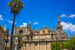 Seville cathedral and Archivo Indias Sevilla Royalty Free Stock Photo
