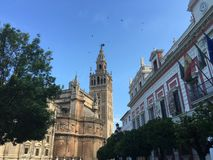 Seville Cathedral With the bell tower Stock Images