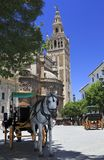 Seville Cathedral and carriages Stock Photography
