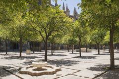 Seville cathedral cloister. Seville Stock Photo