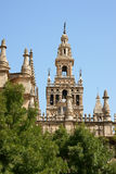 Seville Cathedral detail Royalty Free Stock Photo