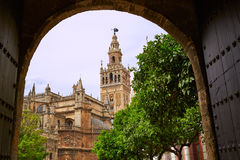 Seville cathedral Giralda tower Sevilla Spain. Seville cathedral Giralda tower from Alcazar arch door of Sevilla Andalusia Spain royalty free stock photos