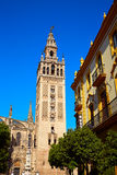 Seville cathedral Giralda tower Sevilla Spain. Seville cathedral Giralda tower of Sevilla Andalusia Spain stock images
