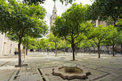 Seville Cathedral and the Giralda views from the garden of the O Stock Images