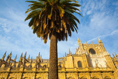 Seville Cathedral at sunset. Spain. Royalty Free Stock Photo
