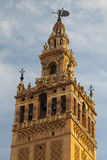 Seville Cathedral at sunset.Spain. Royalty Free Stock Image