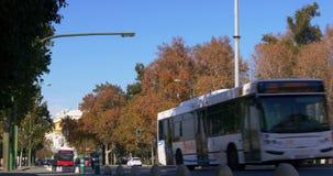 Seville day light traffic street 4k spain. Europe stock footage