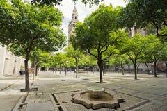 Seville domkyrka och de Giralda sikterna från trädgården av nollan arkivbilder